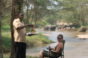 ishasha wilderness camp uganda elephants guest