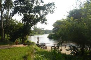 ishasha wilderness camp uganda view