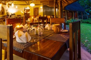 primate lodge kibale dinner