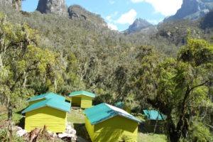 rwenzori trekking uganda kiharo camp 1