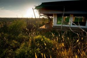 Laikipia Wilderness Camp 6 of 6