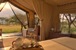 Naboisho camp guest tent interior view dawn carousel