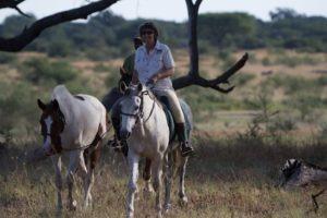 Ride Zimbabwe Horses