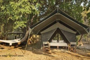 Surefoot Safaris Guest Tent